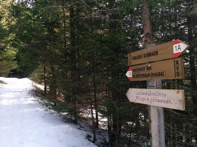 Aufstieg durch den Wald Markierung 1A