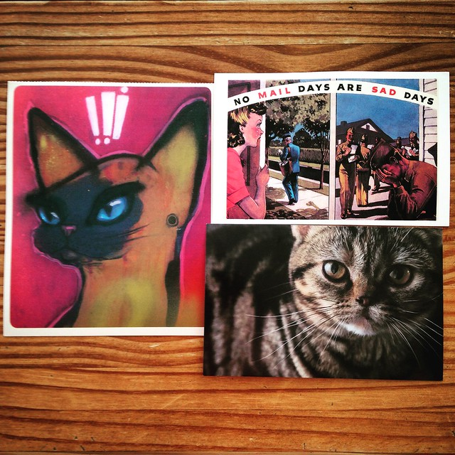 Cats and mail, recently sent postcards