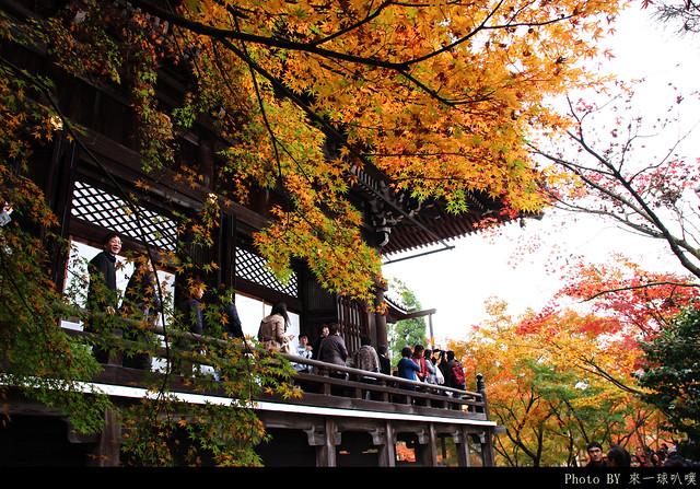 京都-永觀堂070