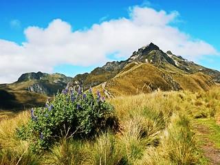 Rucu Pichincha near Quito