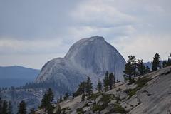 Yosemite NP: Half Dome from Tioga Pass