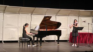 piano,performance,pianist,keyboard,performing arts
