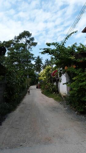 Thailand-0076