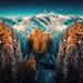 Winterland by Chrisnaton