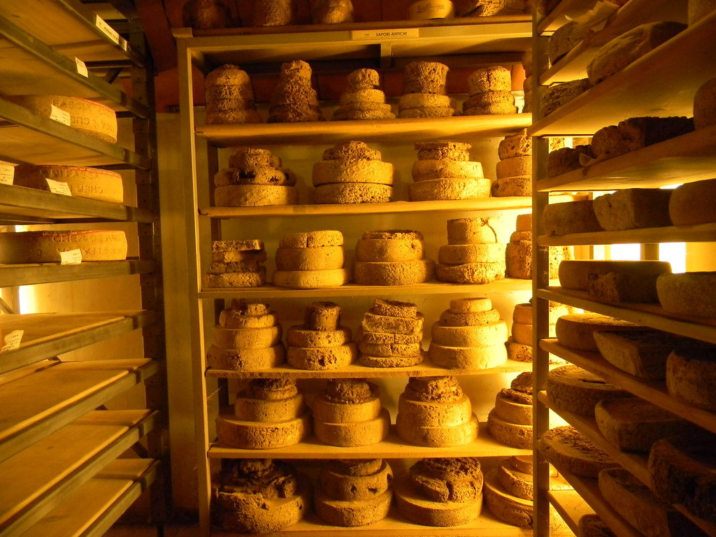 A Trip to a Cheese Cave, Arona, Piedmont, Italy 5