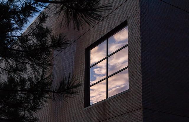 Braml_Window-2