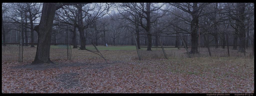 Park trees Pano 06-_01_2K0000