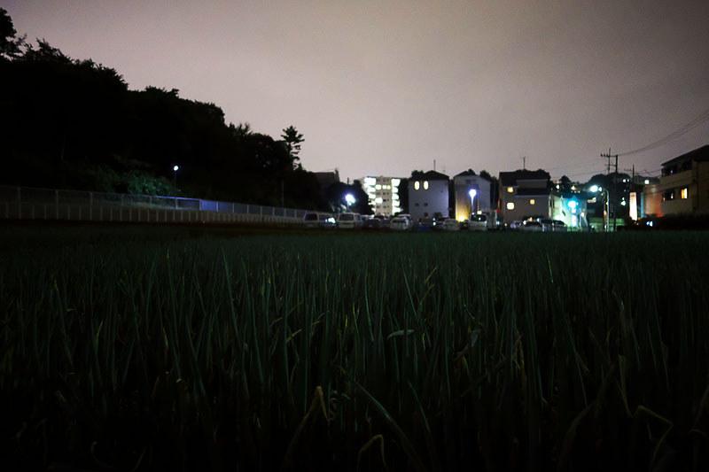 片倉町 とり紀の写真
