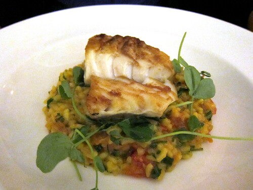 Pan Roasted Loin of Sussex Coast Cod, Saffron and Cured Tomato Risotto, Padano Cheese