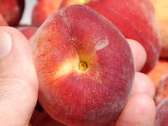starr-140417-0258-Prunus_persica_var_persica-Florida_Prince_fruit-Hawea_Pl_Olinda-Maui