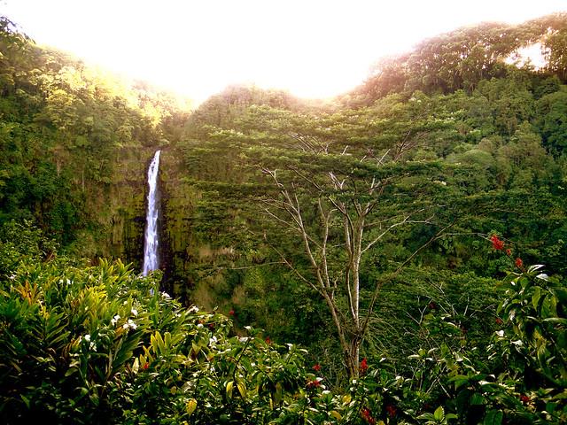 Hawaii 2010-151