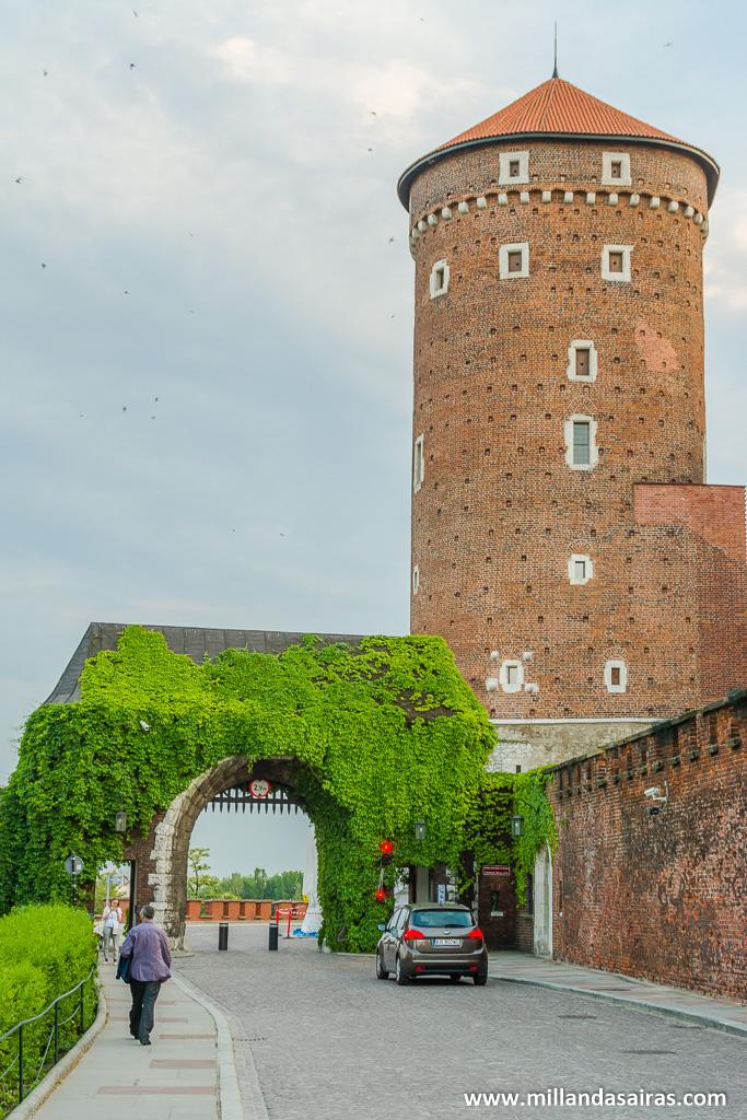 Entrada al castillo de Wawel