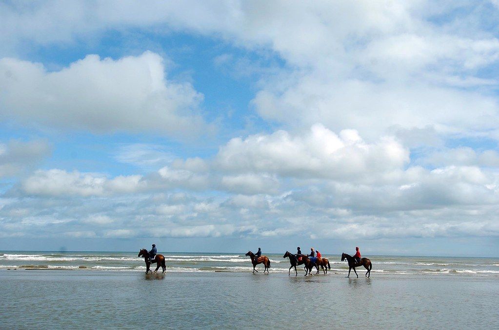 Athy to Laytown - 5 ways to travel via train, bus, car, and Uber