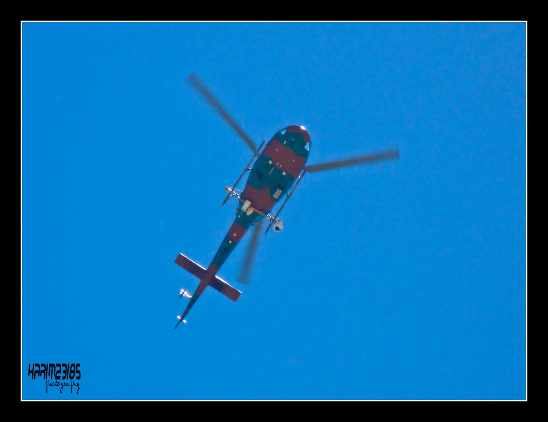 صور مروحيات القوات الجوية الجزائرية Ecureuil/Fennec ] AS-355N2 / AS-555N ] 25987964916_7345661514_o