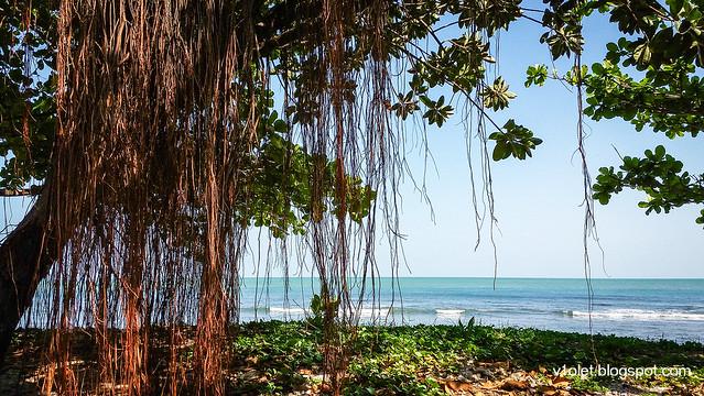 mambruk beach10-095203rw