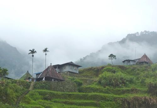 P16-Luzon-Mayoyao-Terrasses (23)