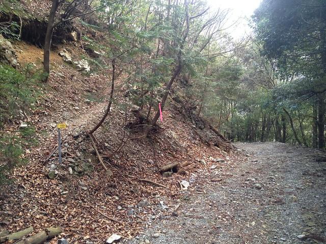 小島山 滝谷登山口