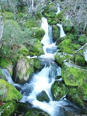 Waterfall @ Serra da Estrela