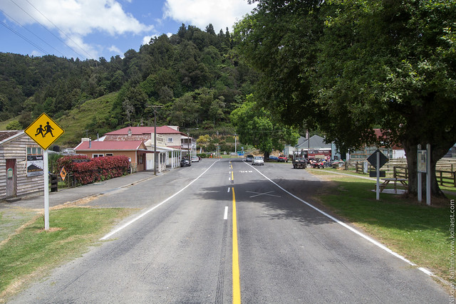 NZ_12-43
