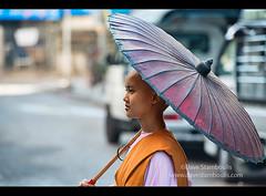 Nun on her alms rounds, Yangon, Myanmar