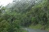Coroglen Road, NZ by jmonhof
