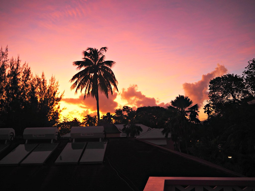 The Little Magpie Southern Palms Barbados Review 33