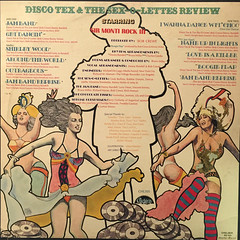 DISCO-TEX & HIS SEX-O-LETTERS:DISCO-TEX & HIS SEX-O-LETTERS(JACKET B)