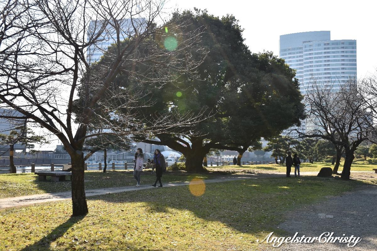CKN_0794_Fotor