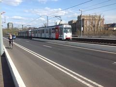 Tram in Düsseldorf