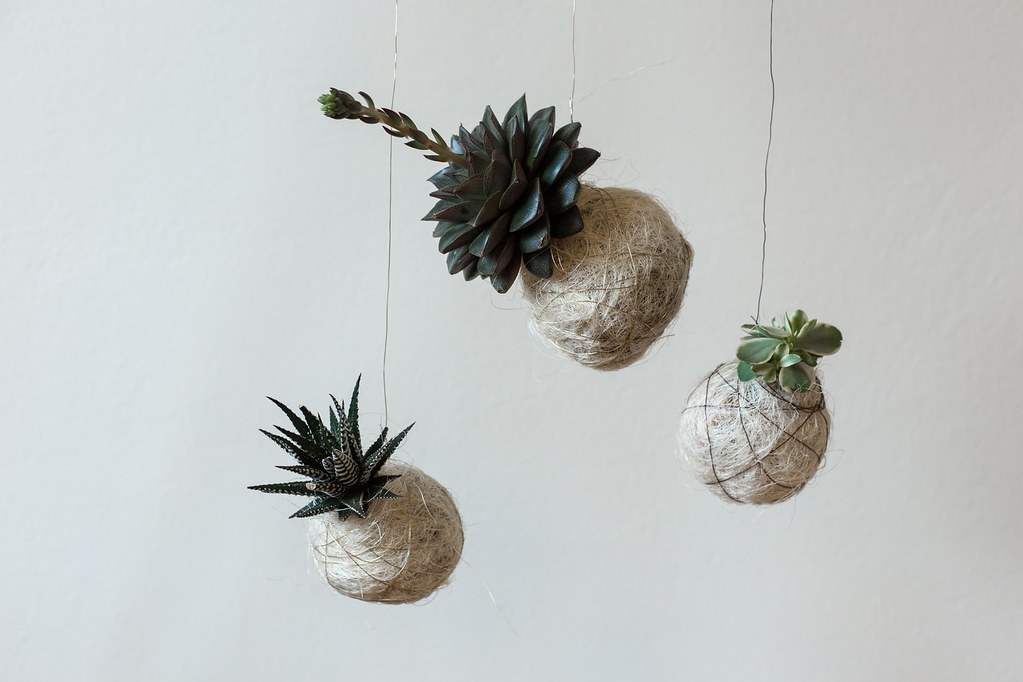 DIY – Hanging String Garden
