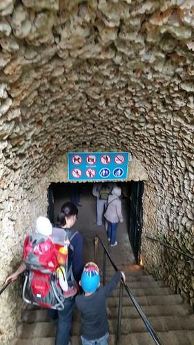 26564210135 c6137bdd9b Tag 6, Cuevas del Drach