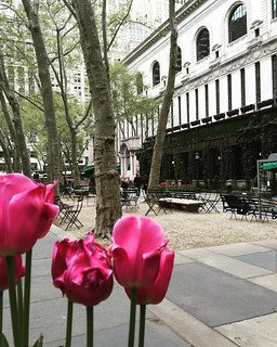 Beautiful #Springday in #NYC today as I walked through #BryantPark past the #NewYorkPublicLibrary. #springInNYC #manhattan #midtown #midtownmanhattan #tulips #flora #flowers #mynewyork #mynyc