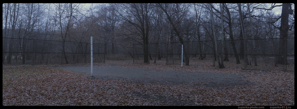 Park trees Pano 05-_01_2K0000