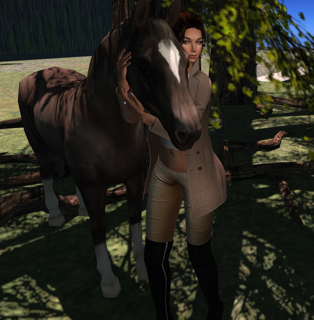 Horse love , Something New- props n poses
