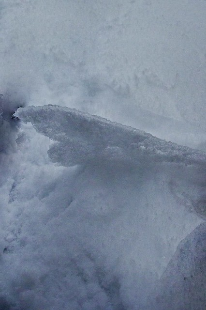 Ice-Snow 1