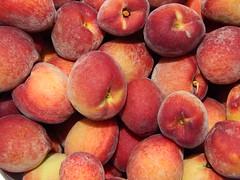 starr-140417-0250-Prunus_persica_var_persica-Florida_Prince_fruit_harvest-Hawea_Pl_Olinda-Maui