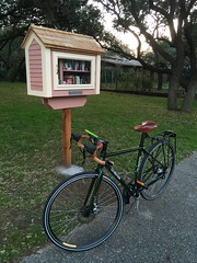 The Little Free Library in Hollywood Park