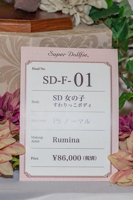 HTドルパ京都13 フルチョイスワンオフ SD F-01