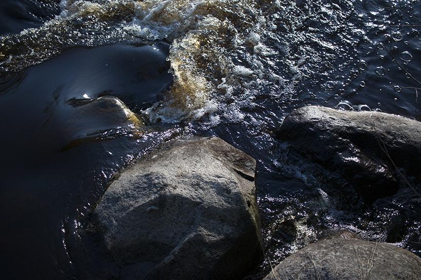 jerE_viinikainen_kevät_luonto_photography