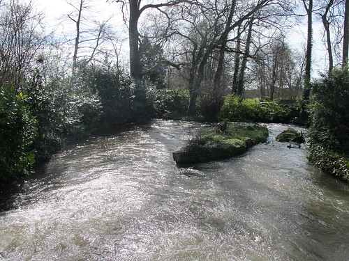 Test River, from bridge within Mottisfont Abbey Gardens