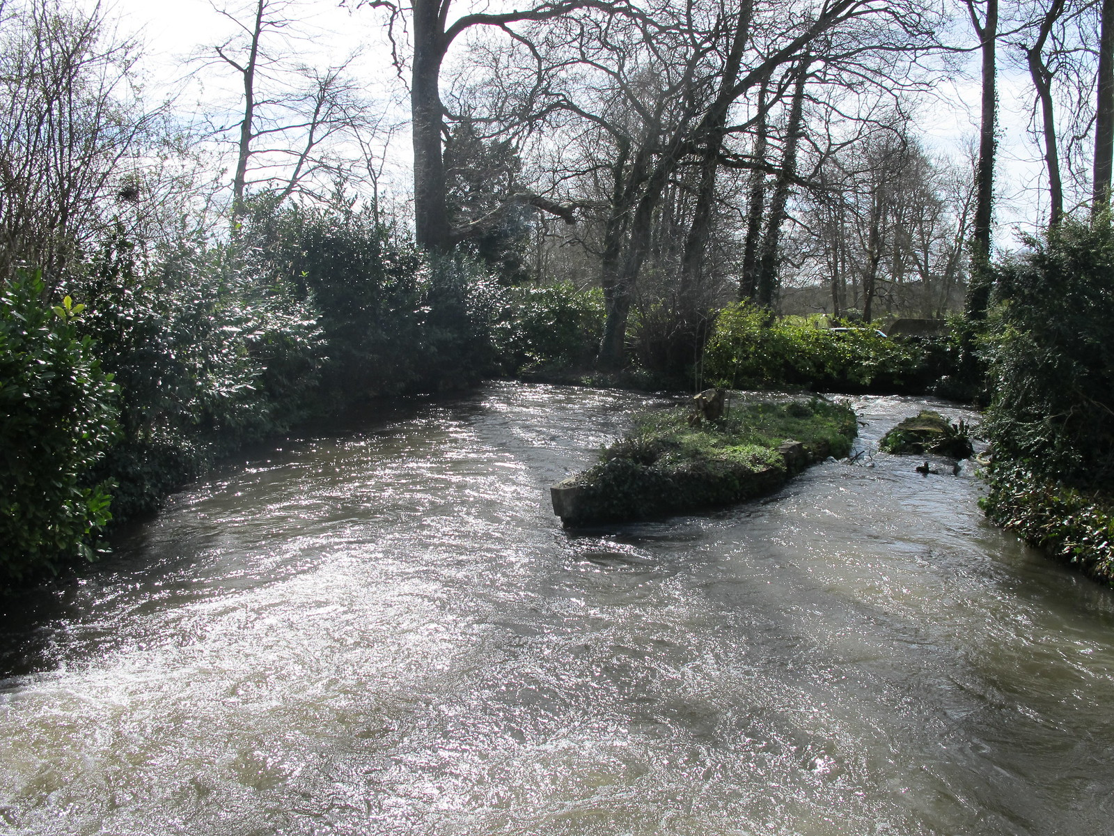Test River, from bridge within Mottisfont Abbey Gardens SWC Walk 58 Mottisfont and Dunbridge to Romsey taken by Karen C.