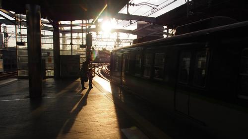 night 日本 sunsetsunrise 枚方市 landscapecityscape 大阪府
