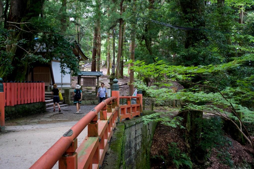 Nara Park_14
