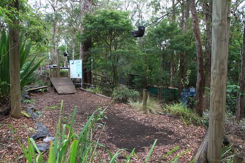 澳洲昆士蘭-Binna Burra Sky Lodges-遊憩設施-20141121-賴鵬智攝-1