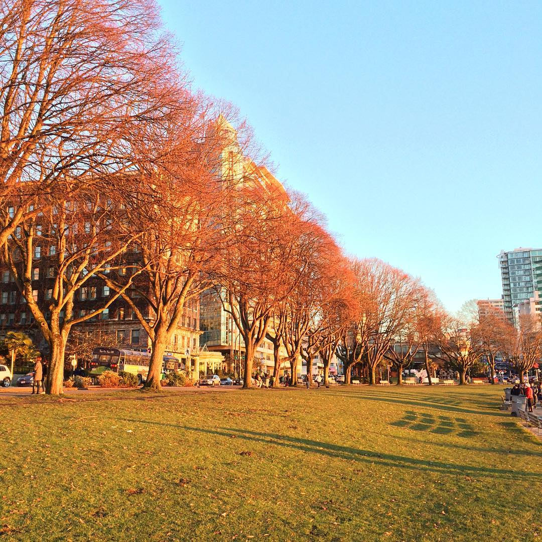 English Bay on new year's day. Vancouver, BC, Canada