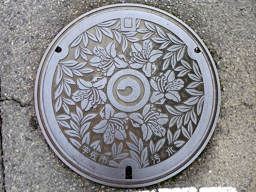 Usa Oita, manhole cover (大分県宇佐市のマンホール)