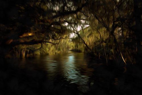 waterway jonmarkdavey doralcanal flridariver