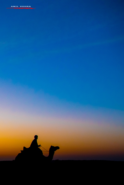 Silhouette - Jaisalmer