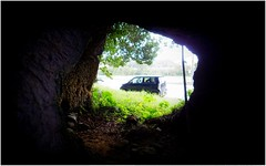 LOOKING OUT FROM THE CAVE OF THE GIANT JUMPING HUMAN-CHASING CENTIPEDES