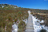 Sentier aménagé sur la montagne de la Table